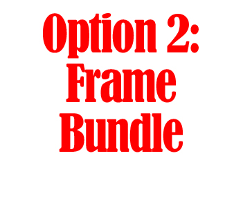 Option 2: Frame Bundle